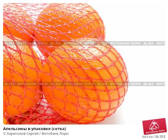 Купить «Апельсины в упаковке (сетка)», фото № 36353, снято 7 апреля 2007 г. (c) Харитонов Сергей / Фотобанк Лори