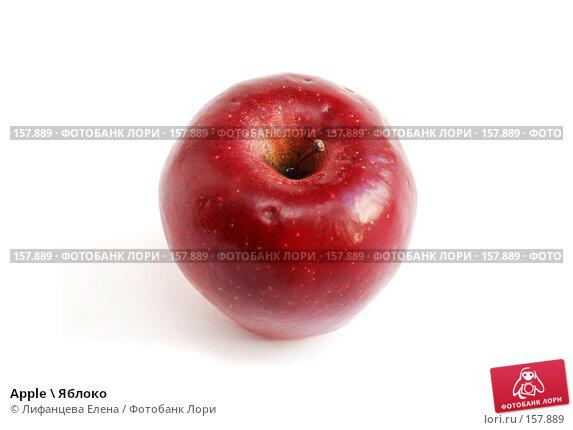 Apple \ Яблоко, фото № 157889, снято 20 декабря 2007 г. (c) Лифанцева Елена / Фотобанк Лори