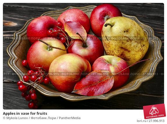 Купить «Apples in vase for fruits», фото № 27996913, снято 16 октября 2019 г. (c) PantherMedia / Фотобанк Лори