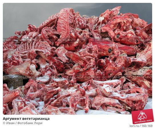 Аргумент вегетарианца, фото № 160169, снято 23 декабря 2007 г. (c) Иван / Фотобанк Лори