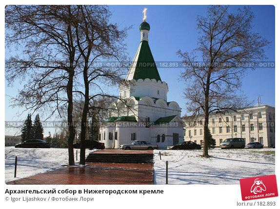 Архангельский собор в Нижегородском кремле, фото № 182893, снято 10 апреля 2007 г. (c) Igor Lijashkov / Фотобанк Лори