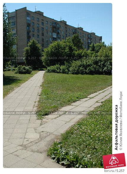 Купить «Асфальтовая дорожка», фото № 5257, снято 6 июля 2006 г. (c) Юлия Яковлева / Фотобанк Лори