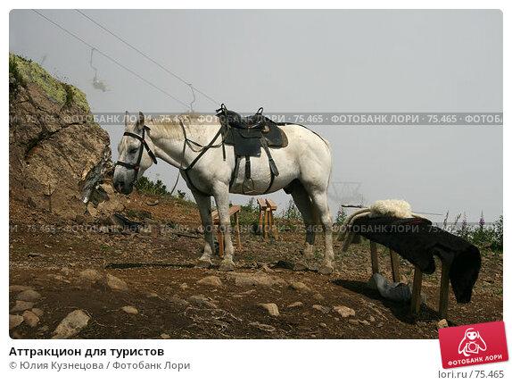 Аттракцион для туристов, фото № 75465, снято 16 августа 2007 г. (c) Юлия Кузнецова / Фотобанк Лори