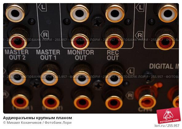 Купить «Аудиоразъемы крупным планом», фото № 255957, снято 18 апреля 2008 г. (c) Михаил Коханчиков / Фотобанк Лори