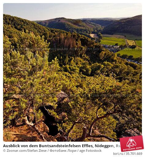 Ausblick von dem Buntsandsteinfelsen Effles, Nideggen, Rureifel, ... Стоковое фото, фотограф Zoonar.com/Stefan Ziese / age Fotostock / Фотобанк Лори