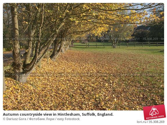 Autumn countryside view in Hintlesham, Suffolk, England. Стоковое фото, фотограф Dariusz Gora / easy Fotostock / Фотобанк Лори