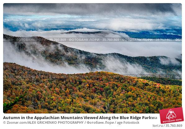 Autumn in the Appalachian Mountains Viewed Along the Blue Ridge Parkwa. Стоковое фото, фотограф Zoonar.com/ALEX GRICHENKO PHOTOGRAPHY / age Fotostock / Фотобанк Лори