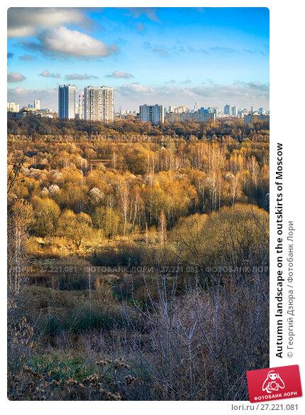 Купить «Autumn landscape on the outskirts of Moscow», фото № 27221081, снято 9 ноября 2017 г. (c) Георгий Дзюра / Фотобанк Лори