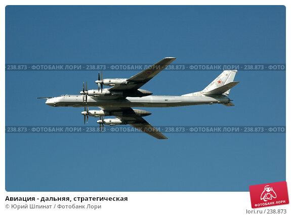 Авиация - дальняя, стратегическая, фото № 238873, снято 11 августа 2007 г. (c) Юрий Шпинат / Фотобанк Лори