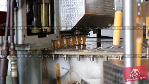 Купить «Автоматическая линия по производству фруктового льда и мороженого», видеоролик № 7528245, снято 24 мая 2019 г. (c) Евгений Ткачёв / Фотобанк Лори