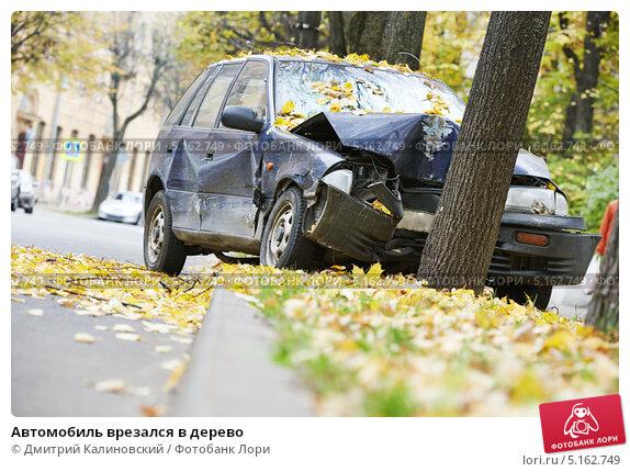 Автомобиль врезался в дерево, фото № 5162749, снято 11 октября 2013 г. (c) Дмитрий Калиновский / Фотобанк Лори