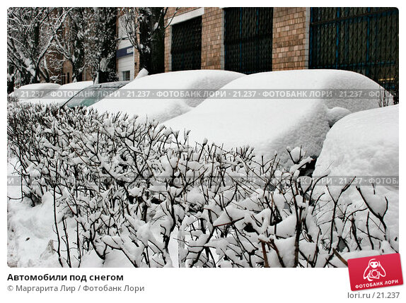 Автомобили под снегом, фото № 21237, снято 15 февраля 2007 г. (c) Маргарита Лир / Фотобанк Лори