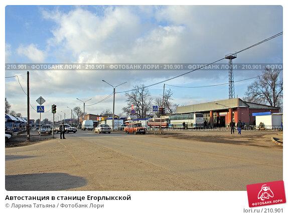 Купить «Автостанция в станице Егорлыкской», фото № 210901, снято 26 февраля 2008 г. (c) Ларина Татьяна / Фотобанк Лори