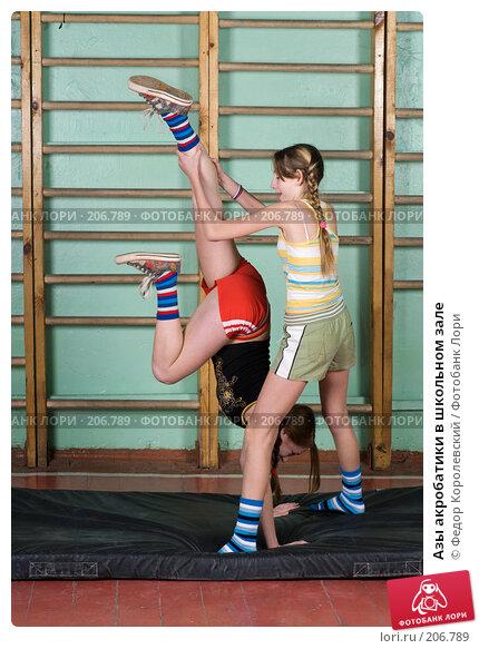 Купить «Азы акробатики в школьном зале», фото № 206789, снято 10 февраля 2008 г. (c) Федор Королевский / Фотобанк Лори
