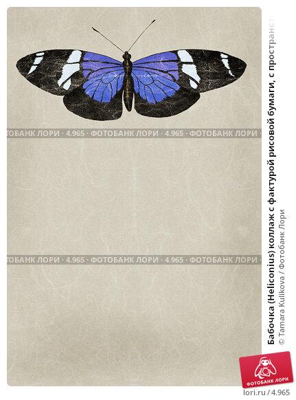 Бабочка (Heliconius) коллаж с фактурой рисовой бумаги, с пространством для текста, иллюстрация № 4965 (c) Tamara Kulikova / Фотобанк Лори