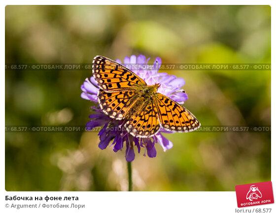 Бабочка на фоне лета, фото № 68577, снято 7 июля 2007 г. (c) Argument / Фотобанк Лори