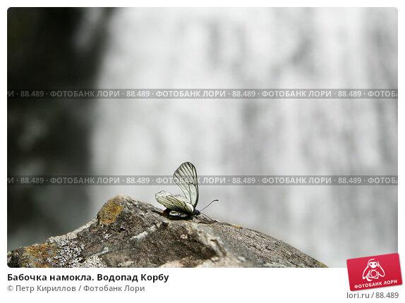 Бабочка намокла. Водопад Корбу, фото № 88489, снято 11 июня 2007 г. (c) Петр Кириллов / Фотобанк Лори