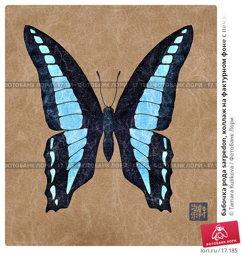 бабочка рода sarpedon, коллаж на фактурном фоне с печатью, иллюстрация № 17185 (c) Tamara Kulikova / Фотобанк Лори