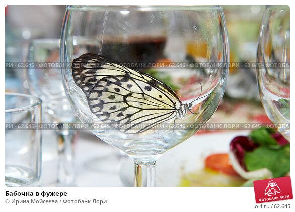 Бабочка в фужере, эксклюзивное фото № 62645, снято 14 июля 2007 г. (c) Ирина Мойсеева / Фотобанк Лори