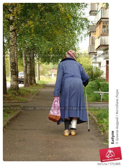 Бабуля, фото № 173865, снято 8 сентября 2007 г. (c) Шахов Андрей / Фотобанк Лори