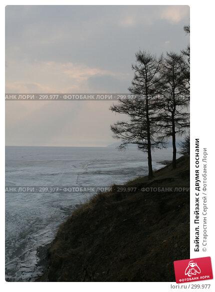 Байкал. Пейзаж с двумя соснами, фото № 299977, снято 23 апреля 2008 г. (c) Старостин Сергей / Фотобанк Лори