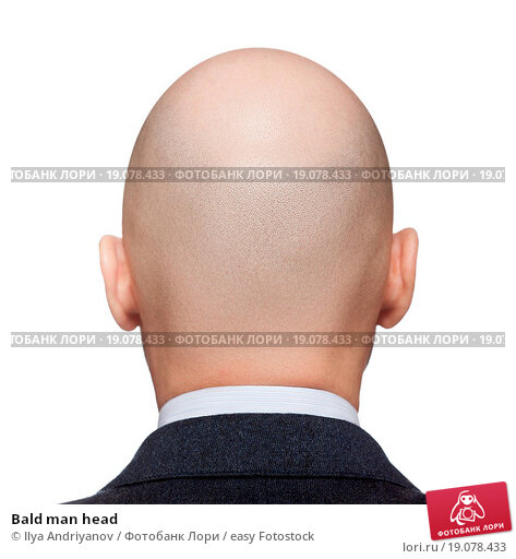 Купить «Bald man head», фото № 19078433, снято 13 августа 2019 г. (c) easy Fotostock / Фотобанк Лори
