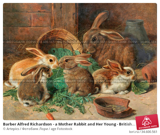 Barber Alfred Richardson - a Mother Rabbit and Her Young - British... Стоковое фото, фотограф Artepics / age Fotostock / Фотобанк Лори