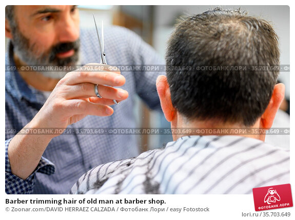 Barber trimming hair of old man at barber shop. Стоковое фото, фотограф Zoonar.com/DAVID HERRAEZ CALZADA / easy Fotostock / Фотобанк Лори