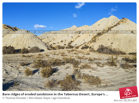 Bare ridges of eroded sandstone in the Tabernas Desert, Europe's ... Стоковое фото, фотограф Thomas Dressler / age Fotostock / Фотобанк Лори
