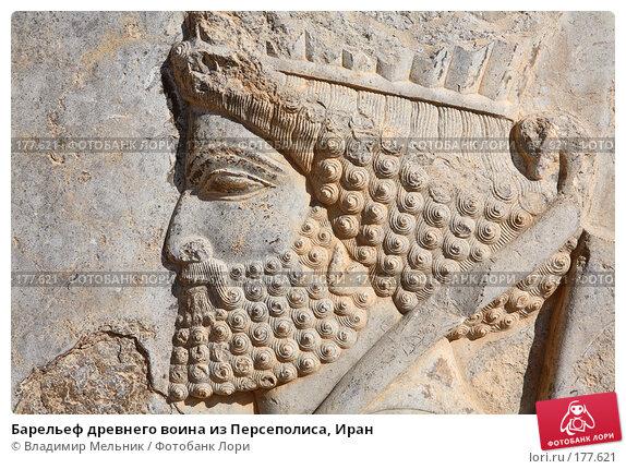Купить «Барельеф древнего воина из Персеполиса, Иран», фото № 177621, снято 27 ноября 2007 г. (c) Владимир Мельник / Фотобанк Лори