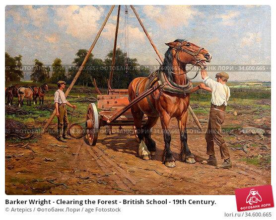 Barker Wright - Clearing the Forest - British School - 19th Century. Стоковое фото, фотограф Artepics / age Fotostock / Фотобанк Лори