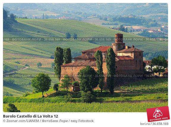Barolo Castello di La Volta 12. Стоковое фото, фотограф Zoonar.com/LIANEM / easy Fotostock / Фотобанк Лори