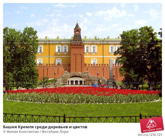Башня Кремля среди деревьев и цветов, фото № 216121, снято 22 мая 2005 г. (c) Филин Константин / Фотобанк Лори