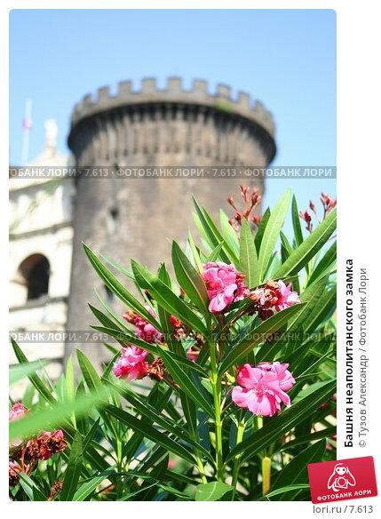 Башня неаполитанского замка, фото № 7613, снято 18 августа 2006 г. (c) Тузов Александр / Фотобанк Лори