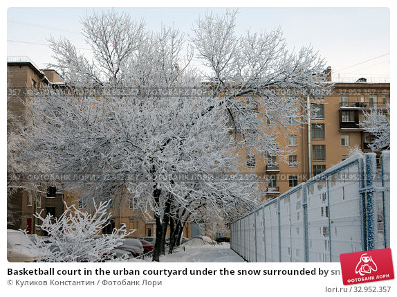 Basketball court in the urban courtyard under the snow surrounded by snowy trees. St. Petersburg. Russia (2016 год). Стоковое фото, фотограф Куликов Константин / Фотобанк Лори