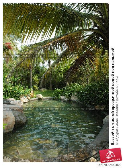 Купить «Бассейн с чистой прозрачной водой под пальмой», фото № 244465, снято 19 сентября 2007 г. (c) Абдурагимова Наталия / Фотобанк Лори