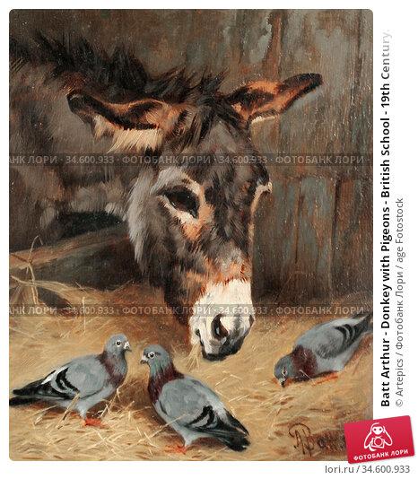 Batt Arthur - Donkey with Pigeons - British School - 19th Century. Стоковое фото, фотограф Artepics / age Fotostock / Фотобанк Лори