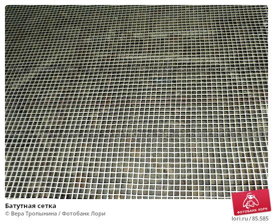 Батутная сетка, фото № 85585, снято 21 августа 2017 г. (c) Вера Тропынина / Фотобанк Лори