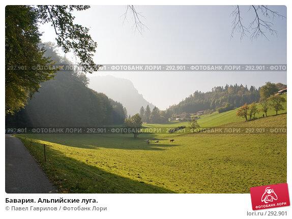 Бавария. Альпийские луга., фото № 292901, снято 16 октября 2005 г. (c) Павел Гаврилов / Фотобанк Лори