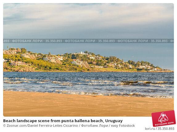 Beach landscape scene from punta ballena beach, Uruguay. Стоковое фото, фотограф Zoonar.com/Daniel Ferreira-Leites Ciccarino / easy Fotostock / Фотобанк Лори