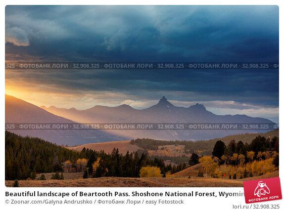 Beautiful landscape of Beartooth Pass. Shoshone National Forest, Wyoming, USA. Sunrise scene. Стоковое фото, фотограф Zoonar.com/Galyna Andrushko / easy Fotostock / Фотобанк Лори