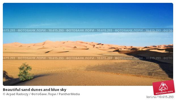 Beautiful sand dunes and blue sky. Стоковое фото, фотограф Arpad Radoczy / PantherMedia / Фотобанк Лори
