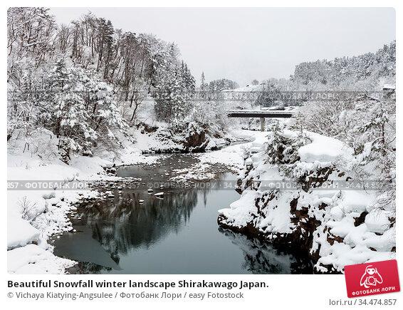 Beautiful Snowfall winter landscape Shirakawago Japan. Стоковое фото, фотограф Vichaya Kiatying-Angsulee / easy Fotostock / Фотобанк Лори