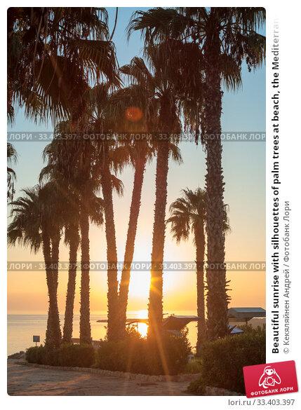 Купить «Beautiful sunrise with silhouettes of palm trees at beach, the Mediterranean sea», фото № 33403397, снято 20 сентября 2010 г. (c) Кекяляйнен Андрей / Фотобанк Лори