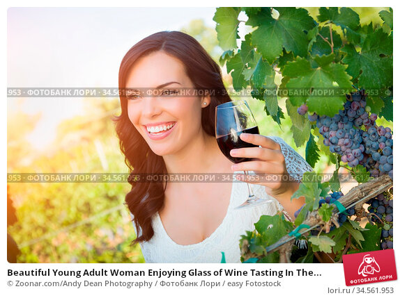 Beautiful Young Adult Woman Enjoying Glass of Wine Tasting In The... Стоковое фото, фотограф Zoonar.com/Andy Dean Photography / easy Fotostock / Фотобанк Лори