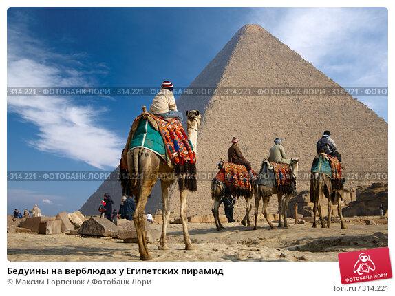 Купить «Бедуины на верблюдах у Египетских пирамид», фото № 314221, снято 27 января 2008 г. (c) Максим Горпенюк / Фотобанк Лори