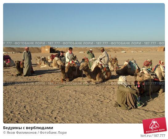 Бедуины с верблюдами, эксклюзивное фото № 187777, снято 13 января 2008 г. (c) Яков Филимонов / Фотобанк Лори