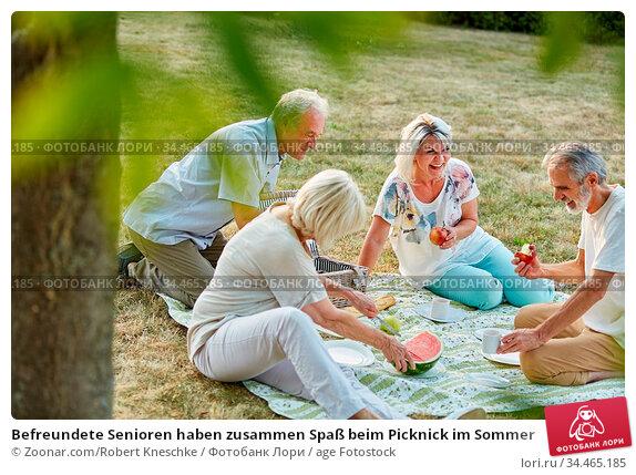 Befreundete Senioren haben zusammen Spaß beim Picknick im Sommer. Стоковое фото, фотограф Zoonar.com/Robert Kneschke / age Fotostock / Фотобанк Лори