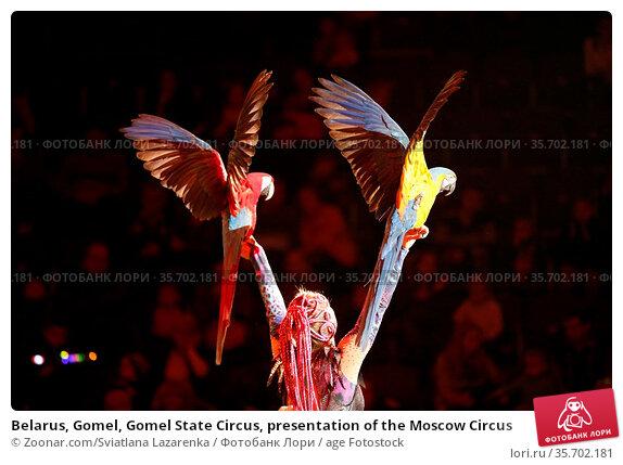 Belarus, Gomel, Gomel State Circus, presentation of the Moscow Circus. Стоковое фото, фотограф Zoonar.com/Sviatlana Lazarenka / age Fotostock / Фотобанк Лори