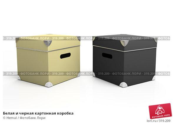 Белая и черная картонная коробка, иллюстрация № 319209 (c) Hemul / Фотобанк Лори